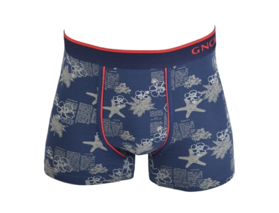 Fancy boxer for men