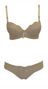 B cup pushup bra set with panty