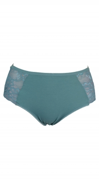 large size panties - cotton