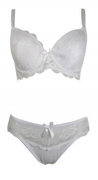 D cup lace bra set with panties white